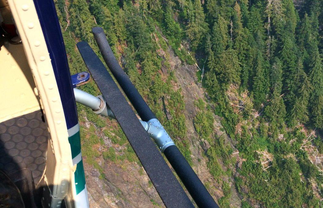 Long line rescue on Pogo Mountain